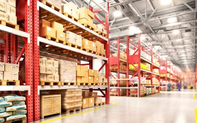 5 Reasons Your Business Needs a Warehouse Management System